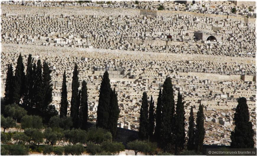 Самое дорогое в мире кладбище