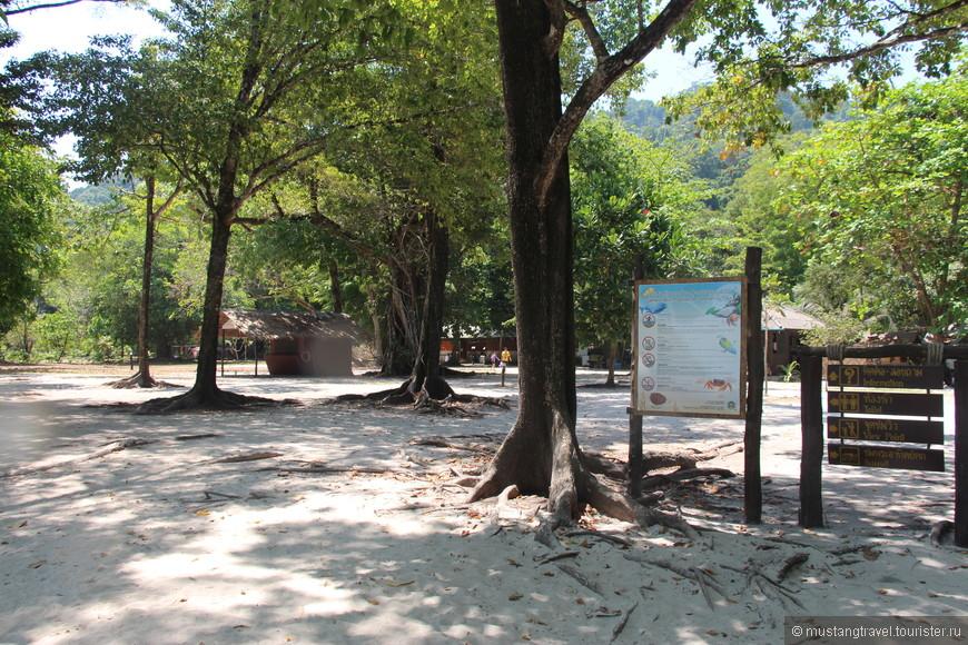 В тени деревьев можно последовать примеру некоторых тайцев, и отдохнуть от палящего солнца, взяв пластиковый стул и наслаждаясь природой и чистым воздухом