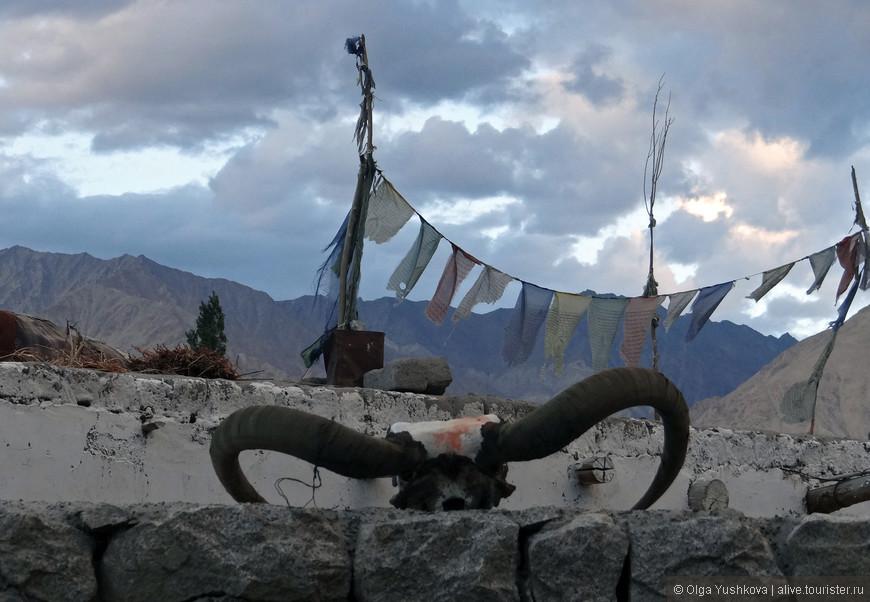 Вот такими артефактами украшают местные жители свои жилища...