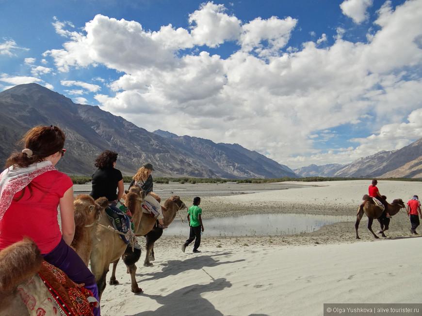 На верблюдах можно покататься за небольшую плату... По времени получится где-то полчаса... Хотя, наверно, если заплатить больше, то и час будут катать... Очереди там нет, в тот день, видимо, мы были единственными посетителями... )))