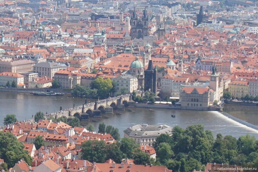 Вид с Петршинской башни на Карлов мост