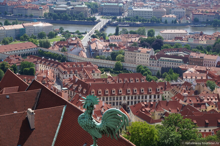 Вид с башни-колокольни собора Святого Вита