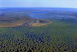 В Сибири проложат туристический маршрут по самому большому в мире болоту