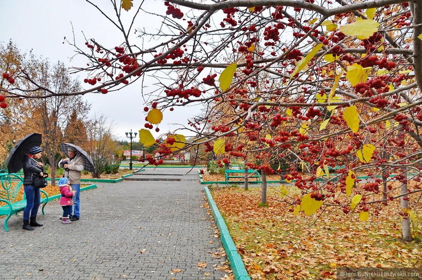 28. Территория зоопарка тоже облагорожена, дорожки, лавочки, урны, деревья.