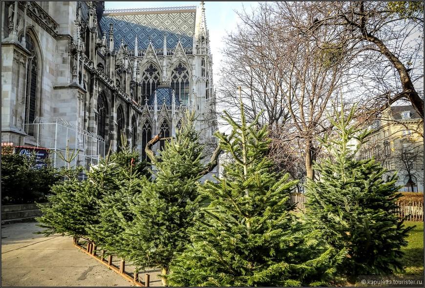 Изначально церковь планировалось построить на площадке у замка Бельведер. Однако от этой идеи отказались из-за далекого расположения замка.  Церковь была одним из первых зданий, построенных на Рингштрассе. Она находится не на самом бульваре, а на площади, которая была названа Максимилиансплац, в честь Фердинанда Максимилиана. Потом площадь получила имя Рузвельта.