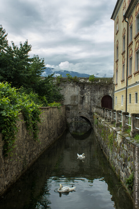 Крепость, как и положено, окружена рвом с водой и лебедями.