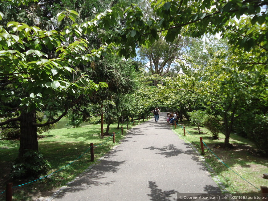В Японском саде