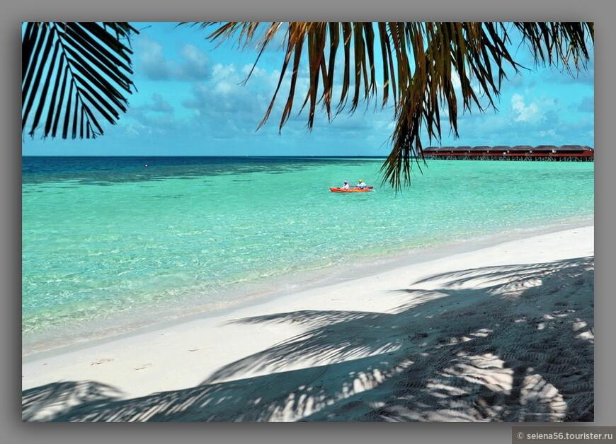 Фото сделано  планшетом с  шезлонга  для нашего  бунгало.Там,где вода светлая и прозрачная- градусов под тридцать и больше.  Там где темно-зеленая- начало коралловых зарослей,вода попрохладнее. А там ,где темно-синяя окраска- обрывистый коралловый риф. И там - блаженство необозримое!  Риф вокруг острова неоднороден , с этой стороны самые красивые заросли кораллов. Мы плавали по три раза в день по 1-1.5 часа.