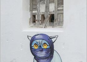Вот и кота одели по-мароккански...