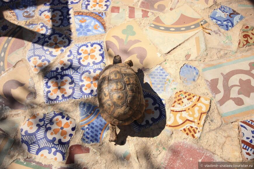 В его саду наряду с живыми черепахами...