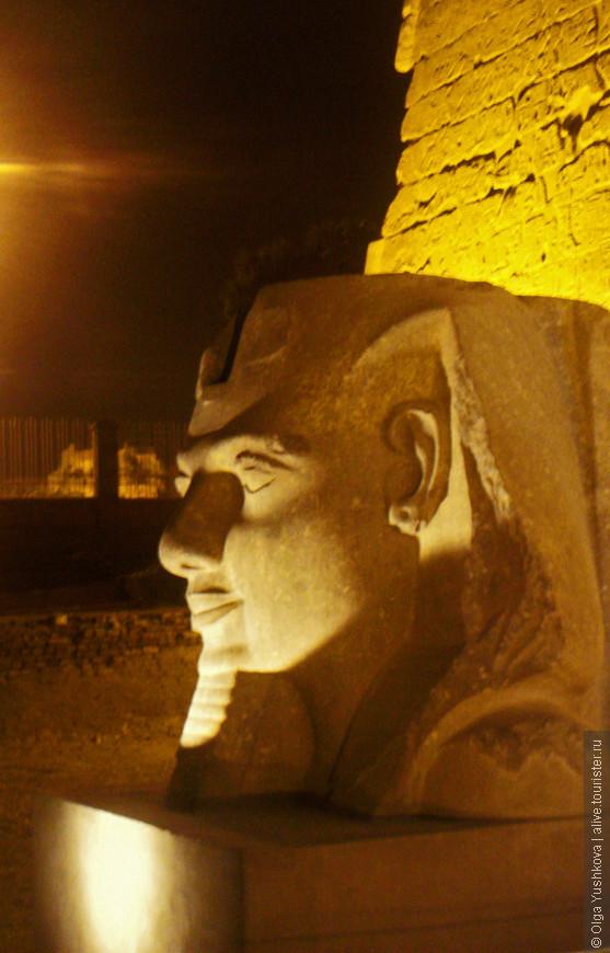 Голова статуи Рамзеса II перед входными вратами в Луксорский храм... Ночная подсветка - повод посетить этот храм ещё раз, в вечернее время... что мы и сделали... )))