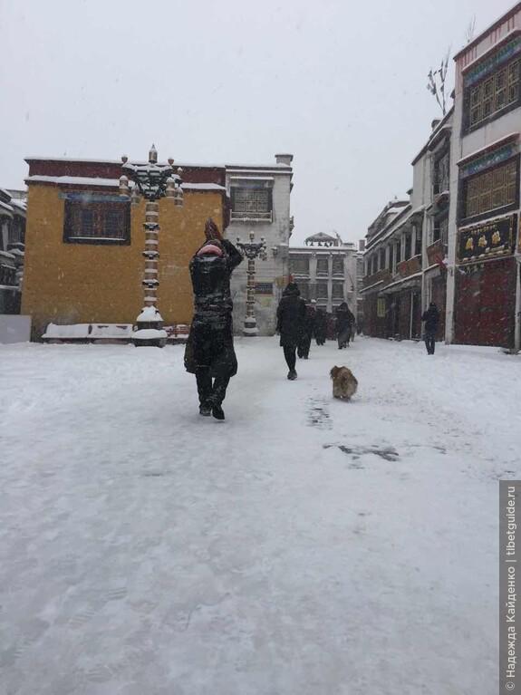 паломники и в снег совершают простирания на Баргхоре