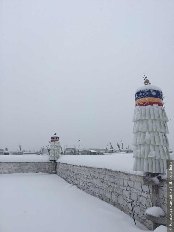 снежное забвение