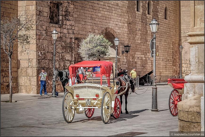Возле Собора можно взять фиакр и прокатиться по набережной и по узким улочкам старого города.
