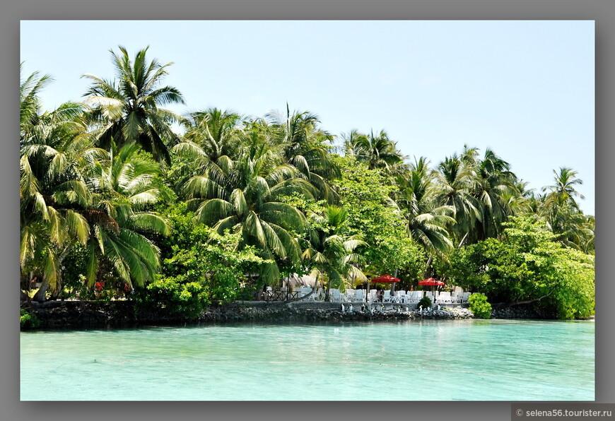 Вид на   буйную растительность острова и кафе с моря.