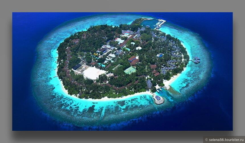"""Остров """"Бандос"""" находится в 40 минутах поездки на скоростном катере. Размеры его в пределах 500 м на 500 м. Риф доступен для плавания по всему периметру."""