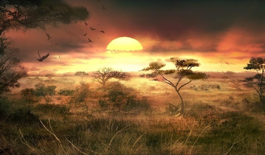 Savanna-Sunset-Free-Wallpaper-Background-For-Computer-322.jpg