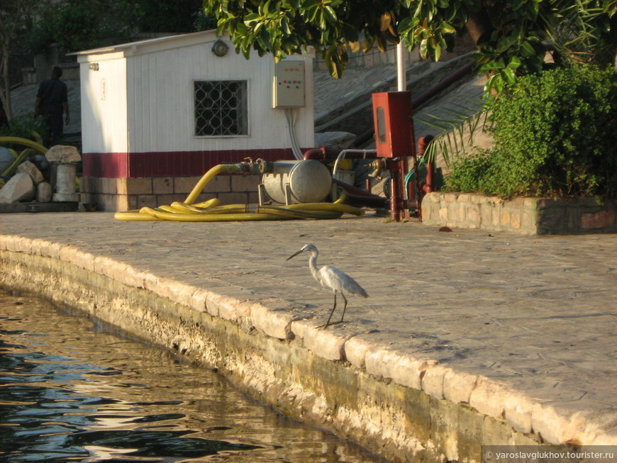 Египет 152.jpg
