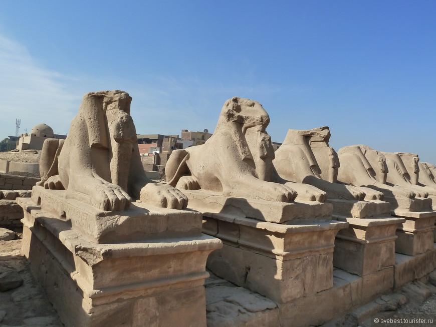 Баран — одно из воплощений бога Амона, которому и посвящён Карнакский храм.