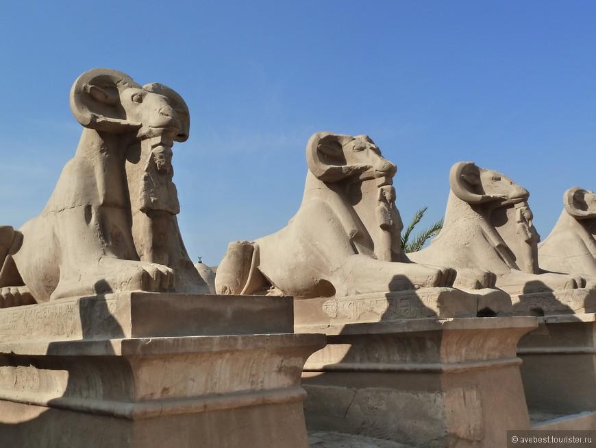 Ещё один ряд бараноголовых сфинксов, и под каждым — маленькая статуя фараона.