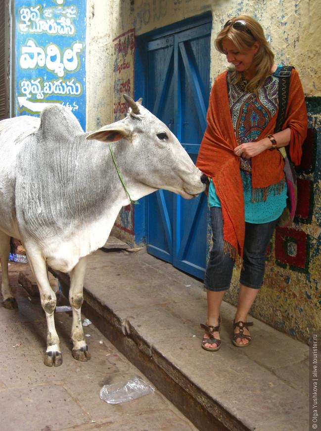 Улицы очень узкие... Заблудиться легко... Разойтись невозможно... Эта белая корова, как я ни старалась от неё увернуться, зачем-то подошла ко мне и облизала мою руку :))) Мне сказали, что это к счастью :)))
