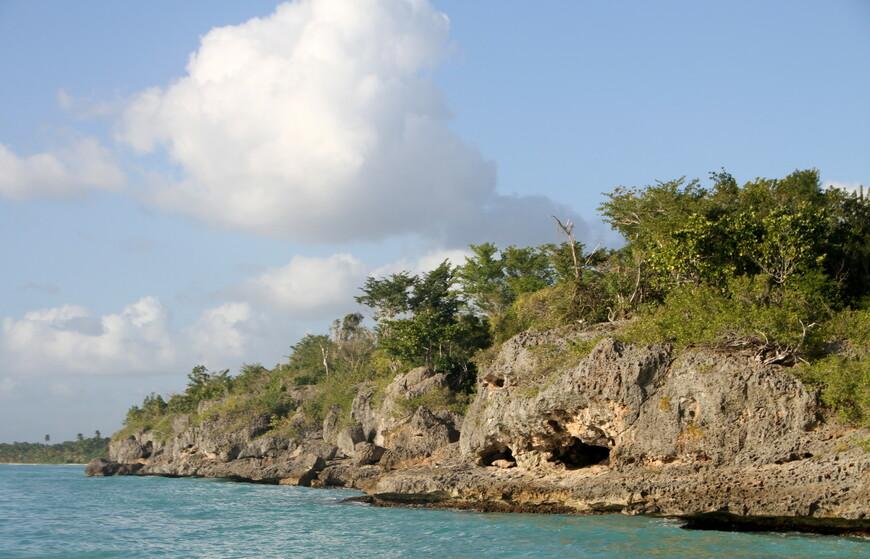 На территории острова произрастают около 539 разных видов растений, многие из которых растут только здесь.  Водятся черепахи и игуана в прибрежных районах можно увидеть ламантинов и дельфинов, а в тёплых водах мелководья живут и размножаются морские звёзды различной величины и окраса. На острове живут чайки, голуби, зеленые попугаи, аисты и другие виды птиц. Источник Википедия.