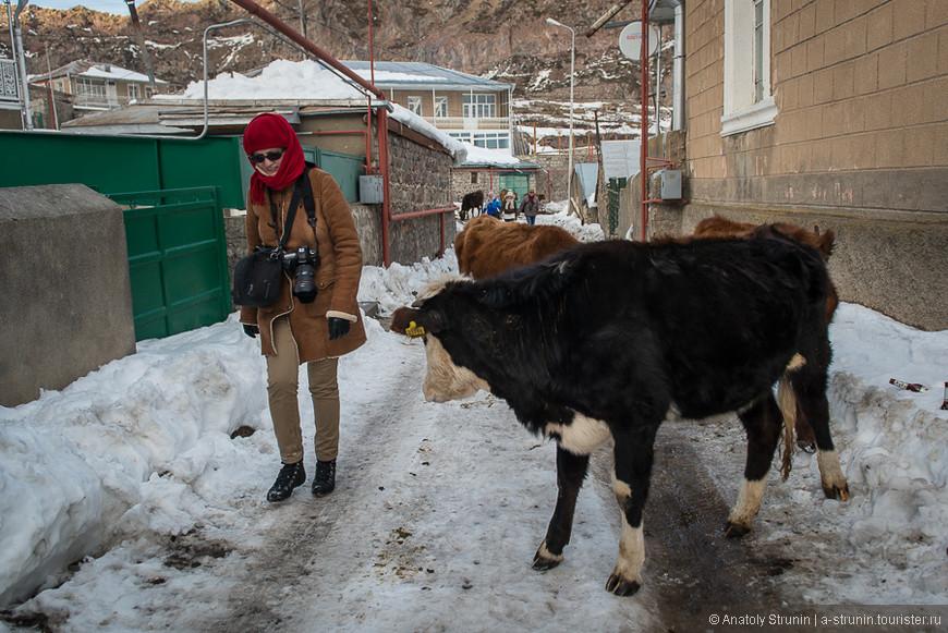 1025_Грузия_by Anatoly Strunin.jpg