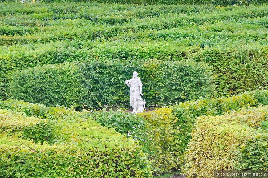 13. К концу XVIII — началу XIX века Нижний сад потерял свой регулярный облик, а к началу XX века в саду сохраняется только центральная аллея и появляются газоны с клумбами.