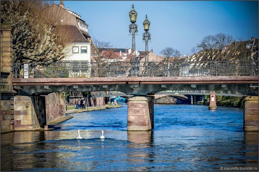 Страсбург находится близ левого брега величественной реки Рейн, по которой проходит современная граница между Германией и Францией.  В разные времена Эльзас принадлежал то французам, то немцам, но этот уголок мира не похож ни на ту, ни на другую страну. Страсбург – сердце Эльзаса. Это небольшой город, который, при желании, можно объехать на велосипеде. Сегодня здесь проживает приблизительно 390 тысяч человек.