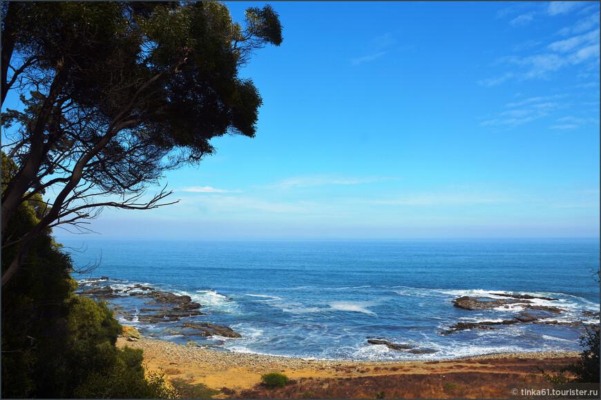 В парке много смотровых площадок, откуда открываются отличные виды на  океан.