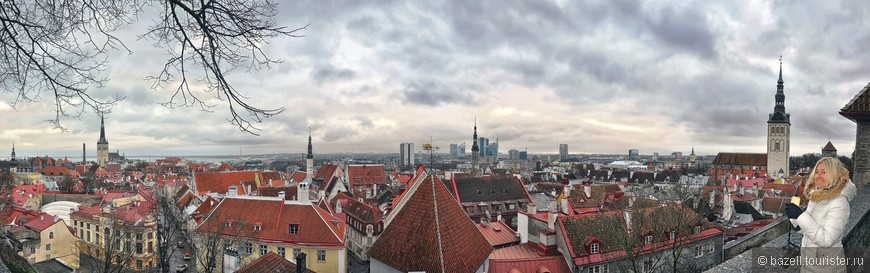 328.Крыши Таллина.jpg