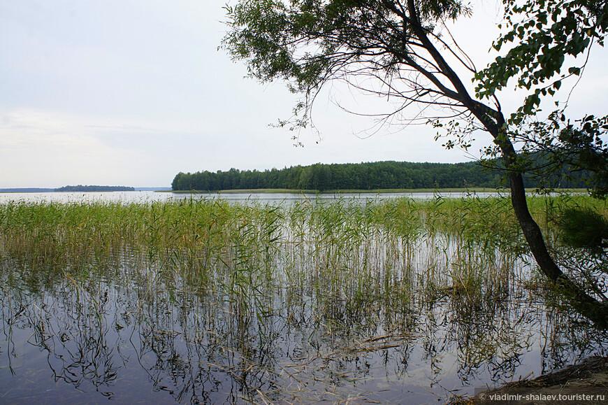 Озеро Снуды. Название озера в переводе с балтского означает «наводить сон». По легенде, как-то во время феодальной войны к озеру подошел Ливонский орден, который должен был соединиться с войсками Свидригайлы. С крутого холма они увидели огромное озеро, которое заворожило их взгляд, а вид переливающихся волн навеял сон, и они заснули прямо на берегу, что позволило местным жителям убить незваных гостей и захватить богатую добычу. С тех пор озеро зовется Снуды.