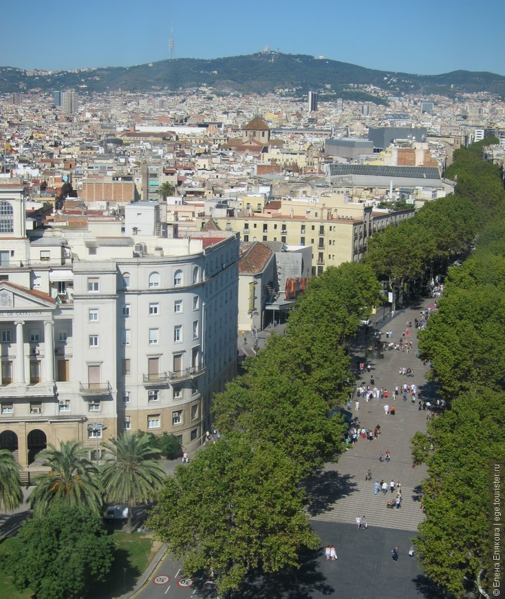 Барселона с  монумента Христовору Колумбу, торгово-пешеходная улица Рамбла