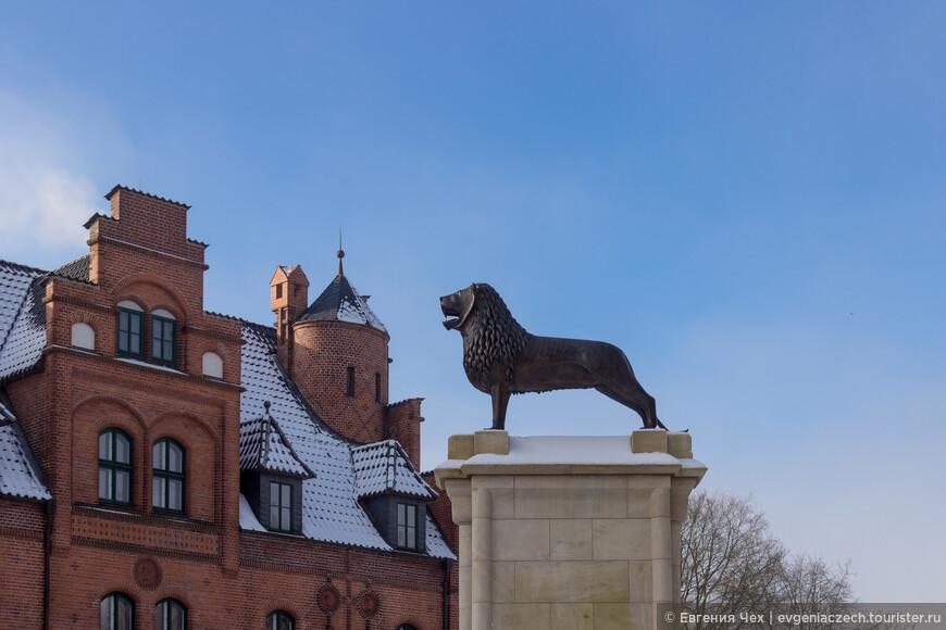 Лев этот был подарен Иоганну брауншвайгским герцогом.