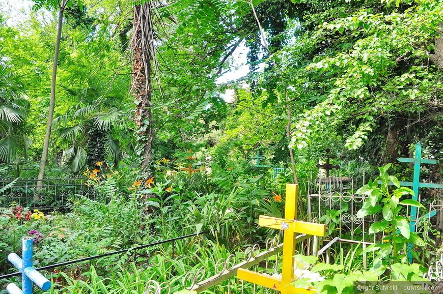 17. Кладбище в тропиках – очень интересно.