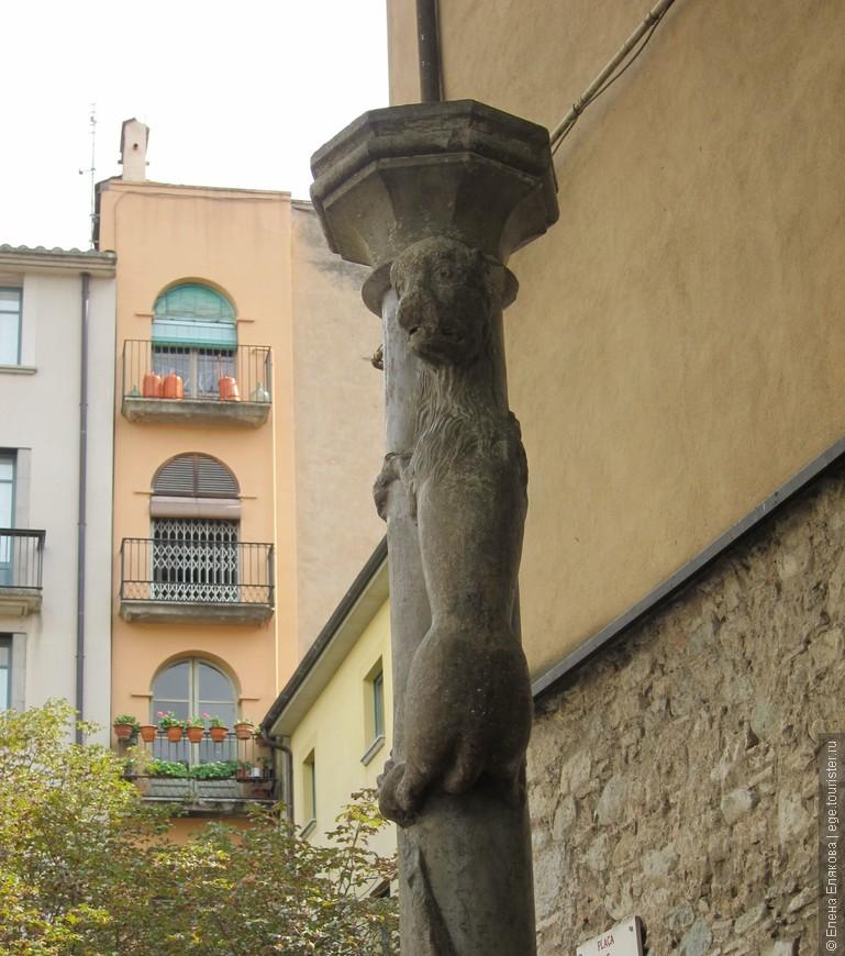 Жиронская львица на площади Placa de Sant Felliu, её надо поцеловать в зад, тогда Жирона примет тебя как «хорошего жителя», и ты навсегда останешься в городе или обязательно вернешься сюда еще. Эту фигуру сперва принимали за обезьяну, ловко вскарабкивающуюся наверх, однако позже все же разглядели в ней львицу.  Оригинал статуи (которой 9 веков) с 1986 года перенесен в городской Музей Искусств, а на улице стоит копия.