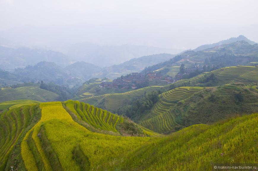 Строительство террас началось во времена правления династии Юань в XIII веке, проживающими здесь народностями яо. Всё что мы сегодня видим, является результатом тяжелейшего труда на протяжении более 800 лет!
