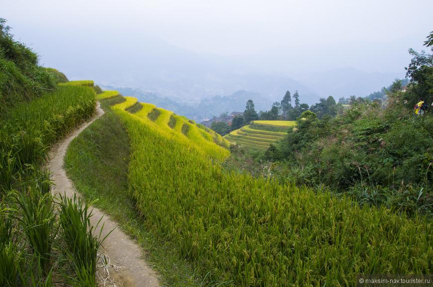По таким тропинкам можно гулять днями, восхищаясь окружающими видами.