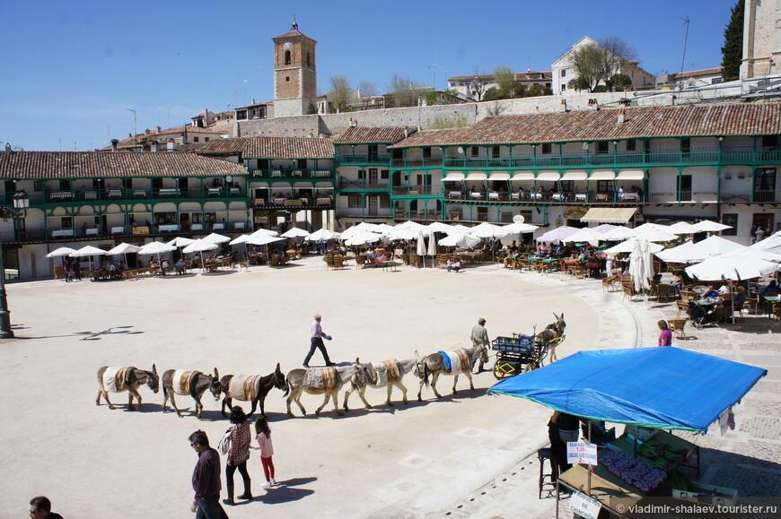 Здесь на площади можно покататься на ослике.