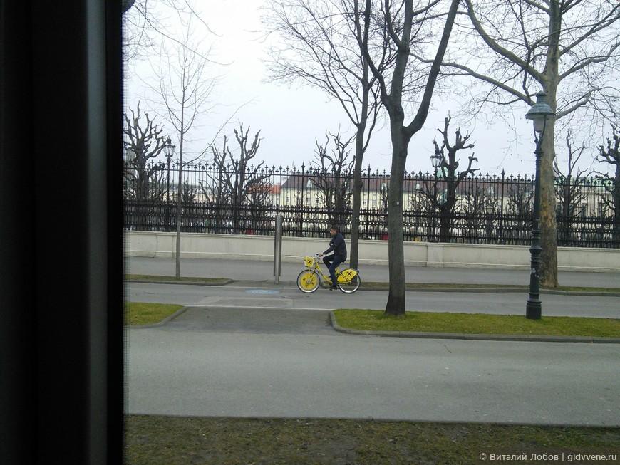 Велосипеды - полноценные участники движения.