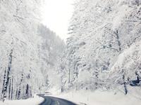 Австрия 2015
