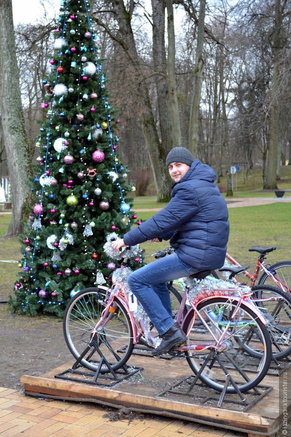 Ёлки на любой вкус и цвет в центре Друскининкая! Вот эта, например, экономит энергию и веселит народ - прокатившись на одном из велосипедов, припаркованных возле нее, вы зажжете лампочки на этой новогодней красавице. Второй велосипед позволит зажечь звезду на верхушке. А если вы будете усердно крутить педали на третьем, из динамика зазвучит бодрая рождественская песенка :)