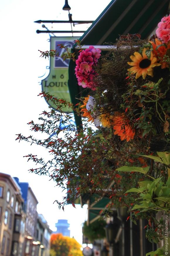 Цветов в городе очень много, по своей яркости они очень сильно уступают пышной канадской осени...