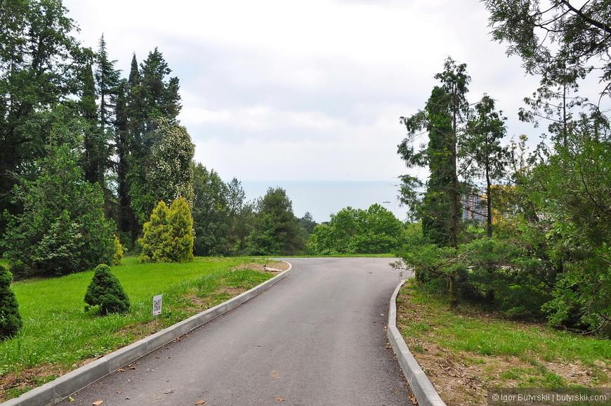 15. Большой знаток экзотических растений С. Н. Худеков высадил в парке около 400 видов деревьев и кустарников, он же к 1892 осуществил планировку парка вместе со своим другом садовником К. А. Лангау.
