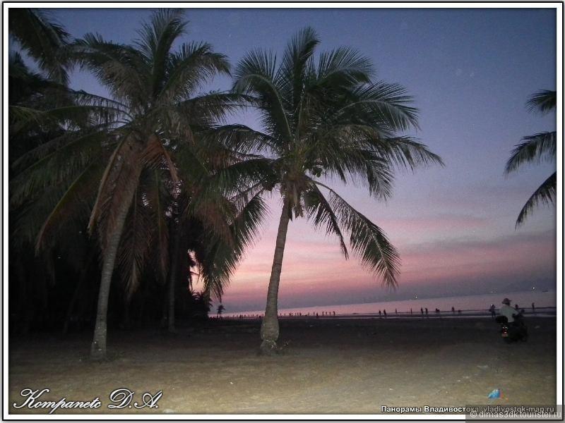 Пальмы пляж и закат