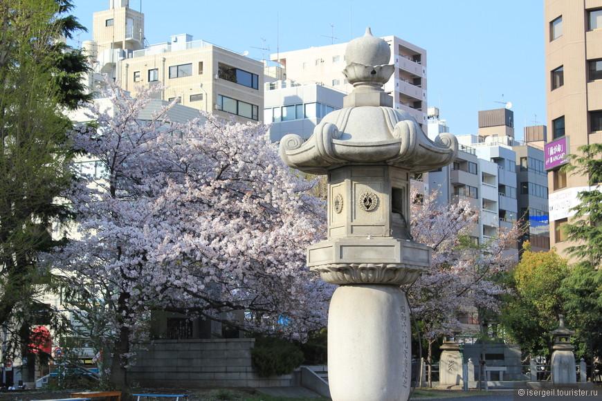 Поездка началась со столицы Японии - Токио.