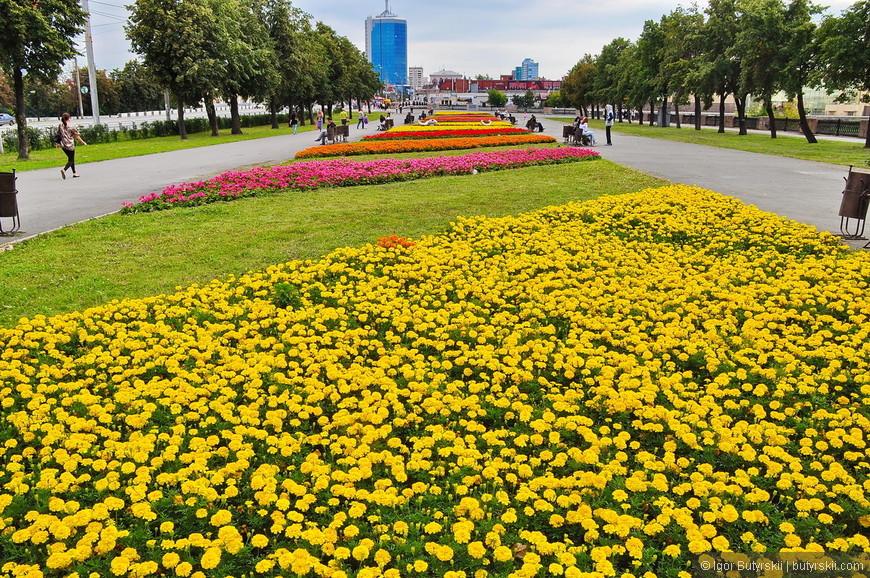 33. Но не все так плохо. На открыточных видах всегда можно увидеть цветы, и прекрасную улицу Кирова (не на фото).