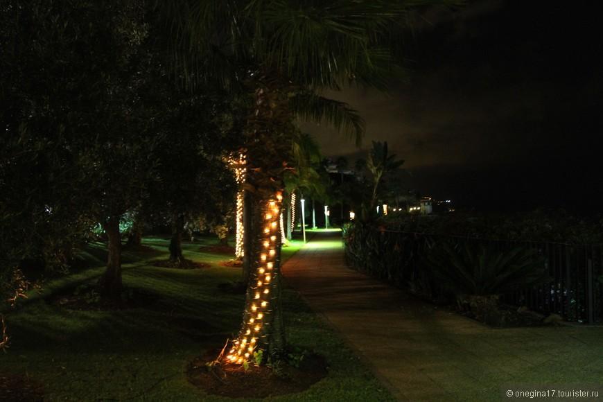 Мадейра - очень спокойный остров, гулять можно всю ночь напролет!