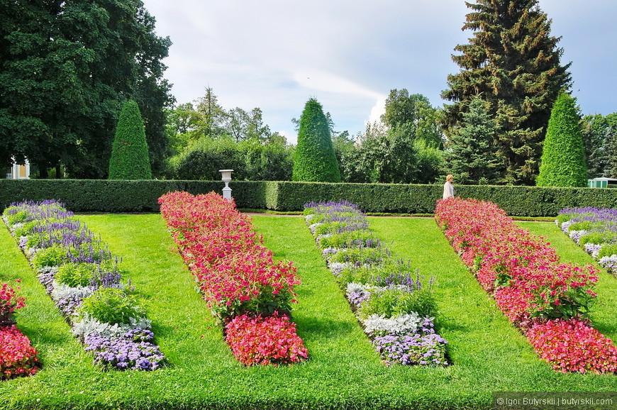 03. Везде чистота, зелень, цветы. Турист в Петергофе главный и это заметно сразу.