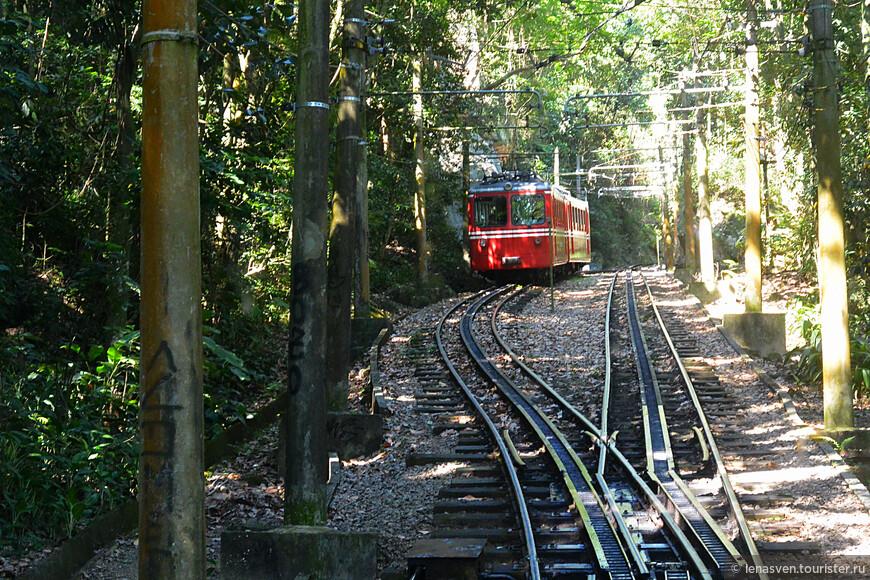 Электрическая железная дорога. По ней ходит к вершине горы Корковадо маленький поезд с маленькими миниатюрными вагончиками.